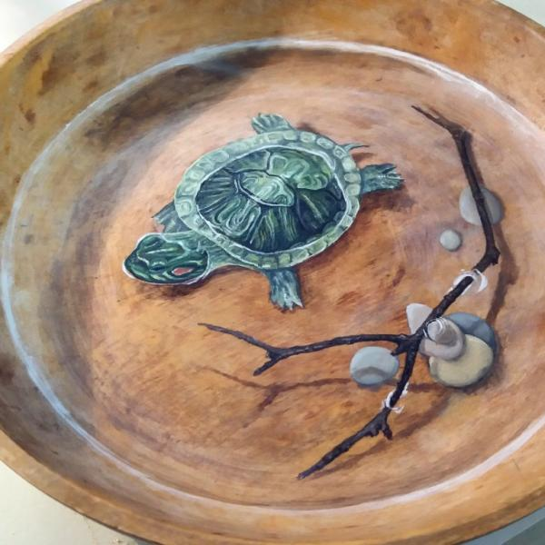 Turtle in bowl