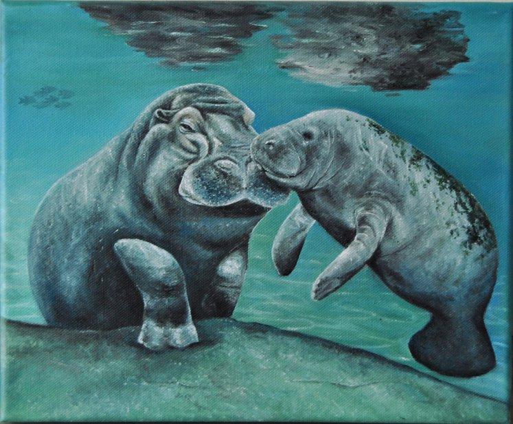 Hippo Manatee