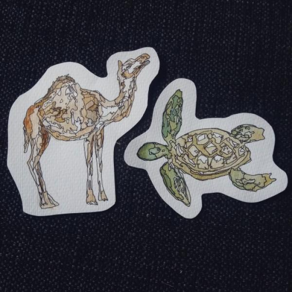 Camel and Turtle